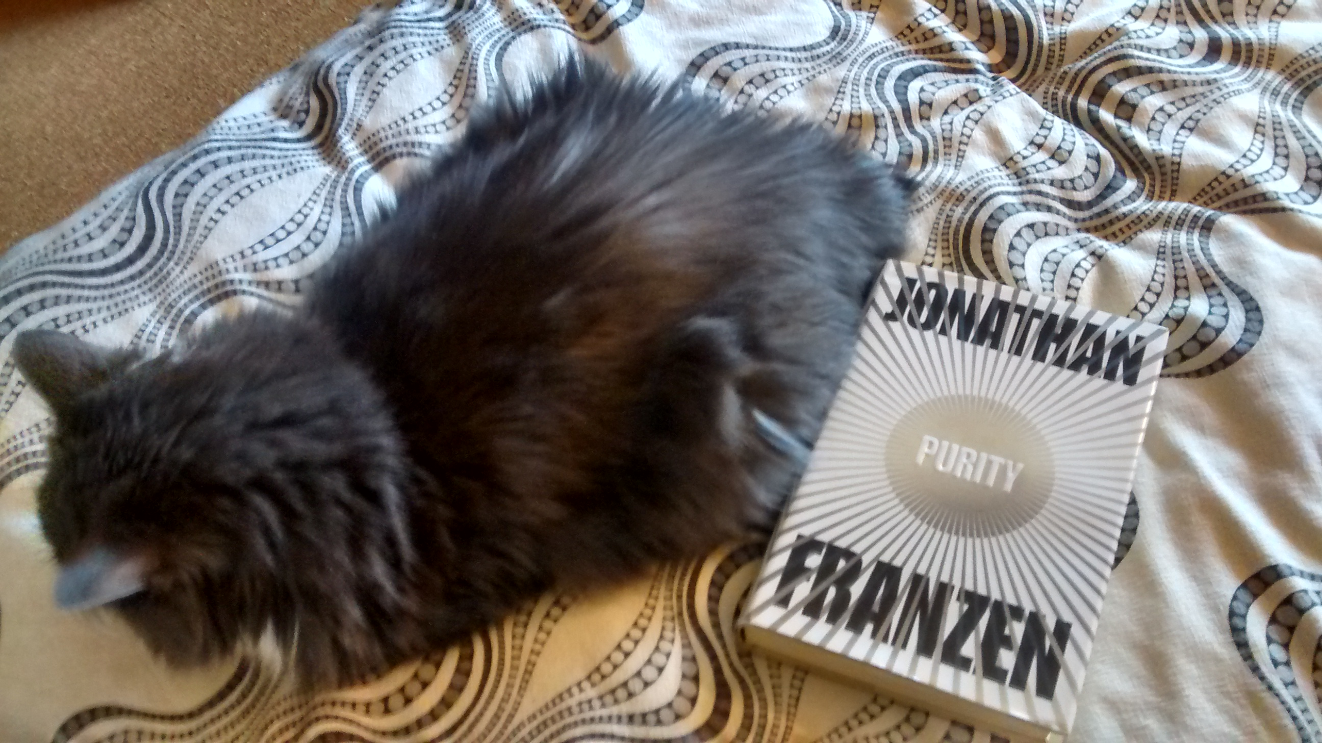 Book Review: Purity by Jonathan Franzen