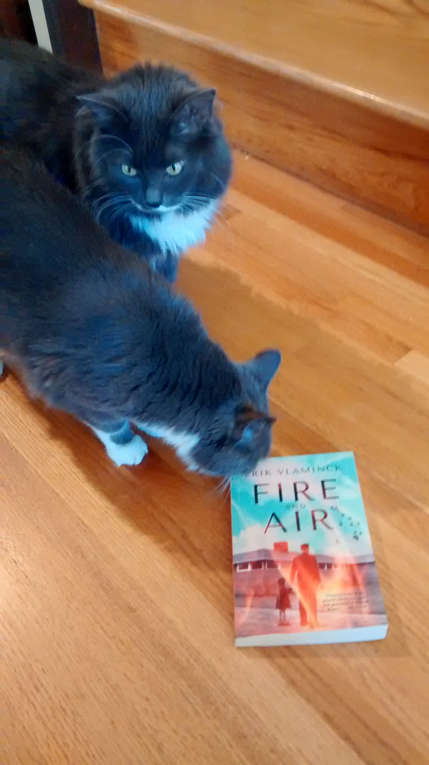 Smokey was ambivalent about this book, but Pearl was willing to take a look