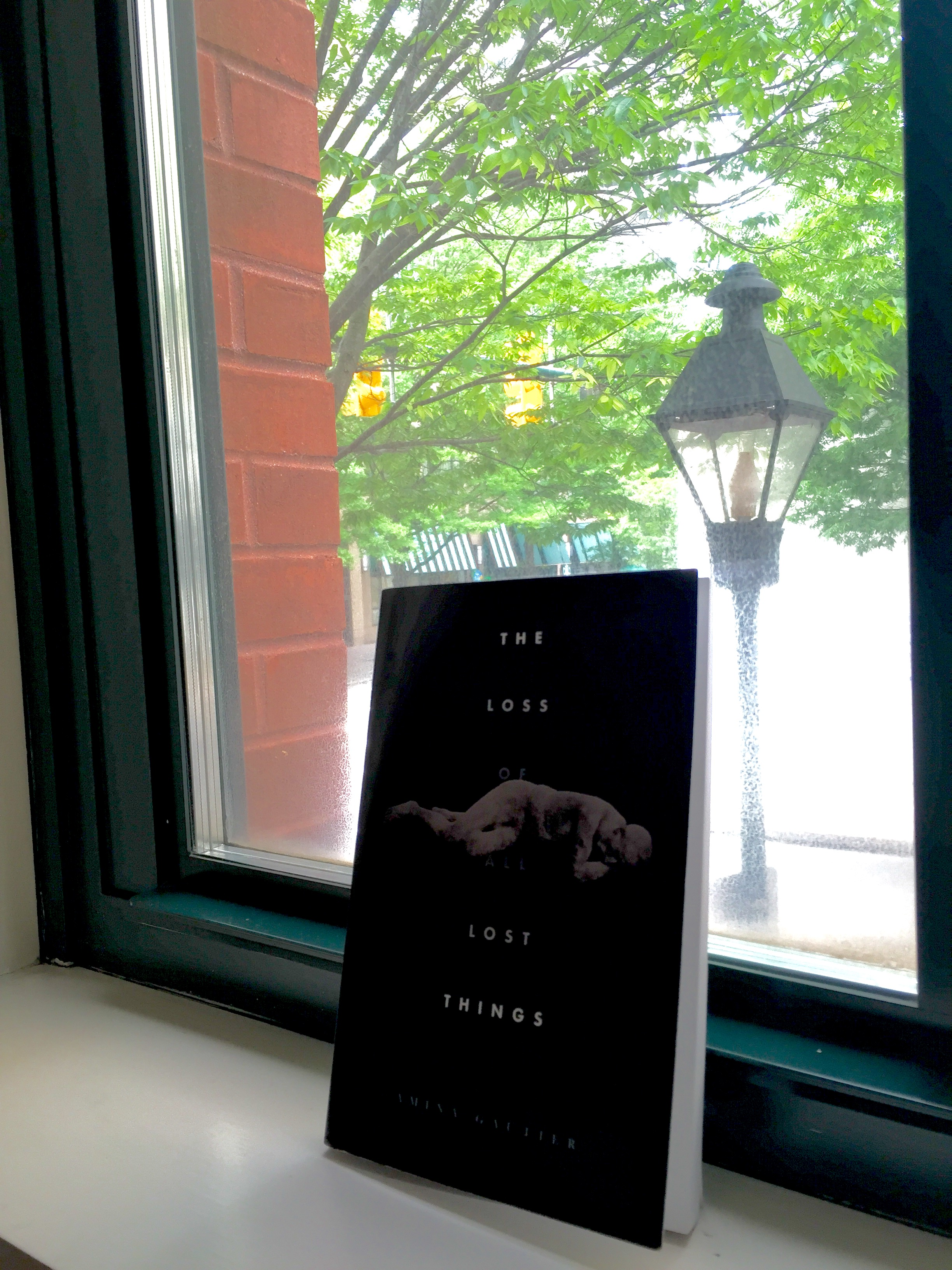 Book Review: The Loss of All Lost Things by Amina Gautier