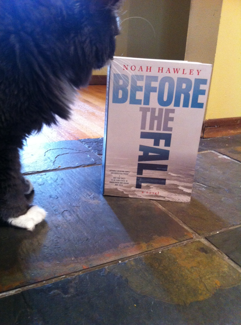 Book Review: Before the Fall by Noah Hawley