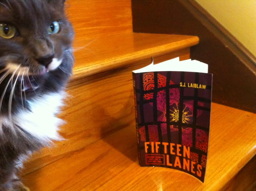 YA Book Review: Fifteen Lanes by S.J. Laidlaw