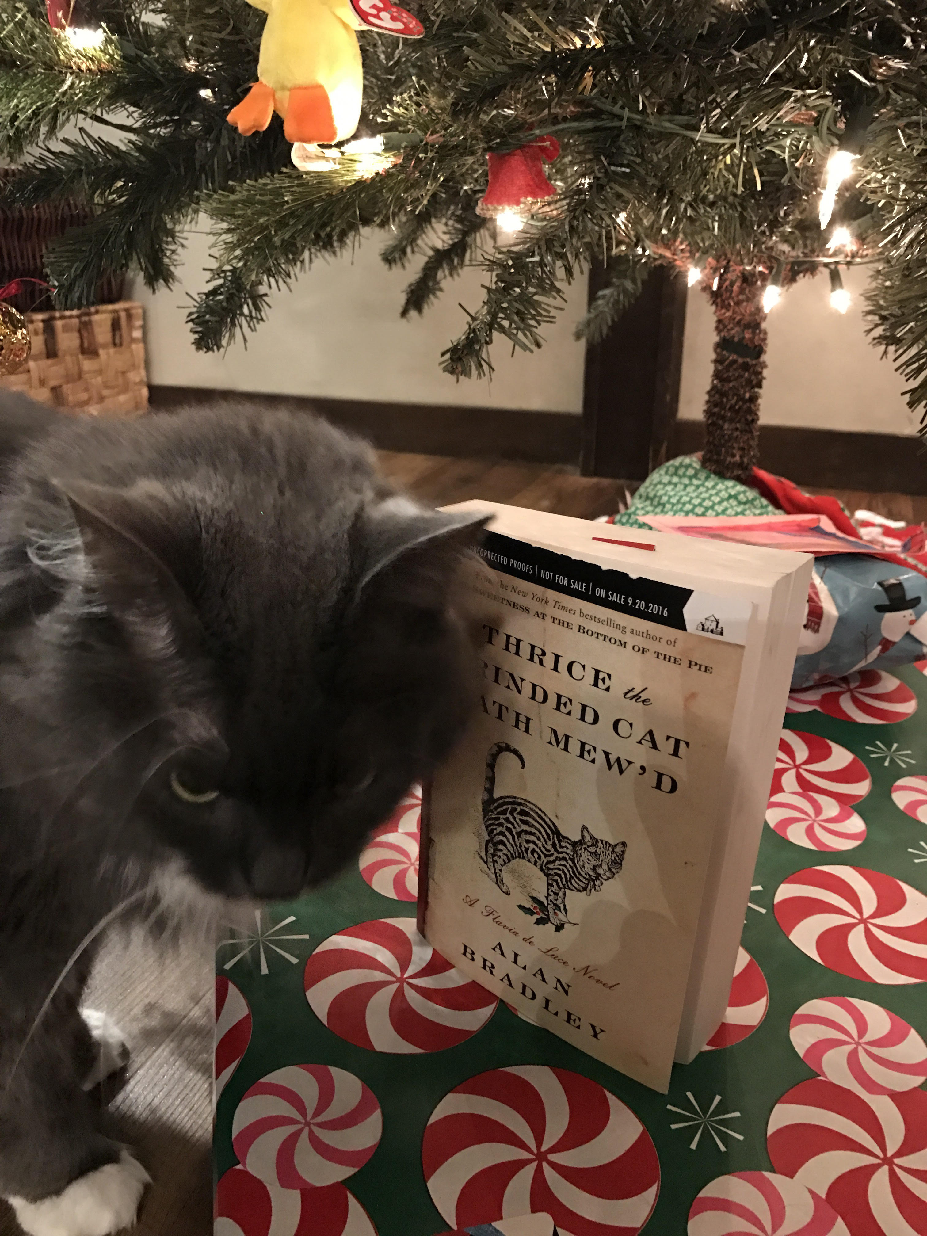 Book Review: Thrice the Brinded Cat Hath Mew'd by Alan Bradley
