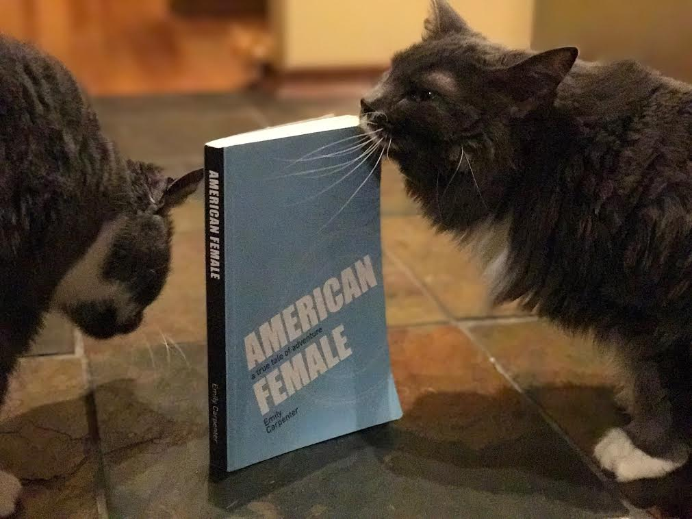 Book Review: American Female by Emily Carpenter