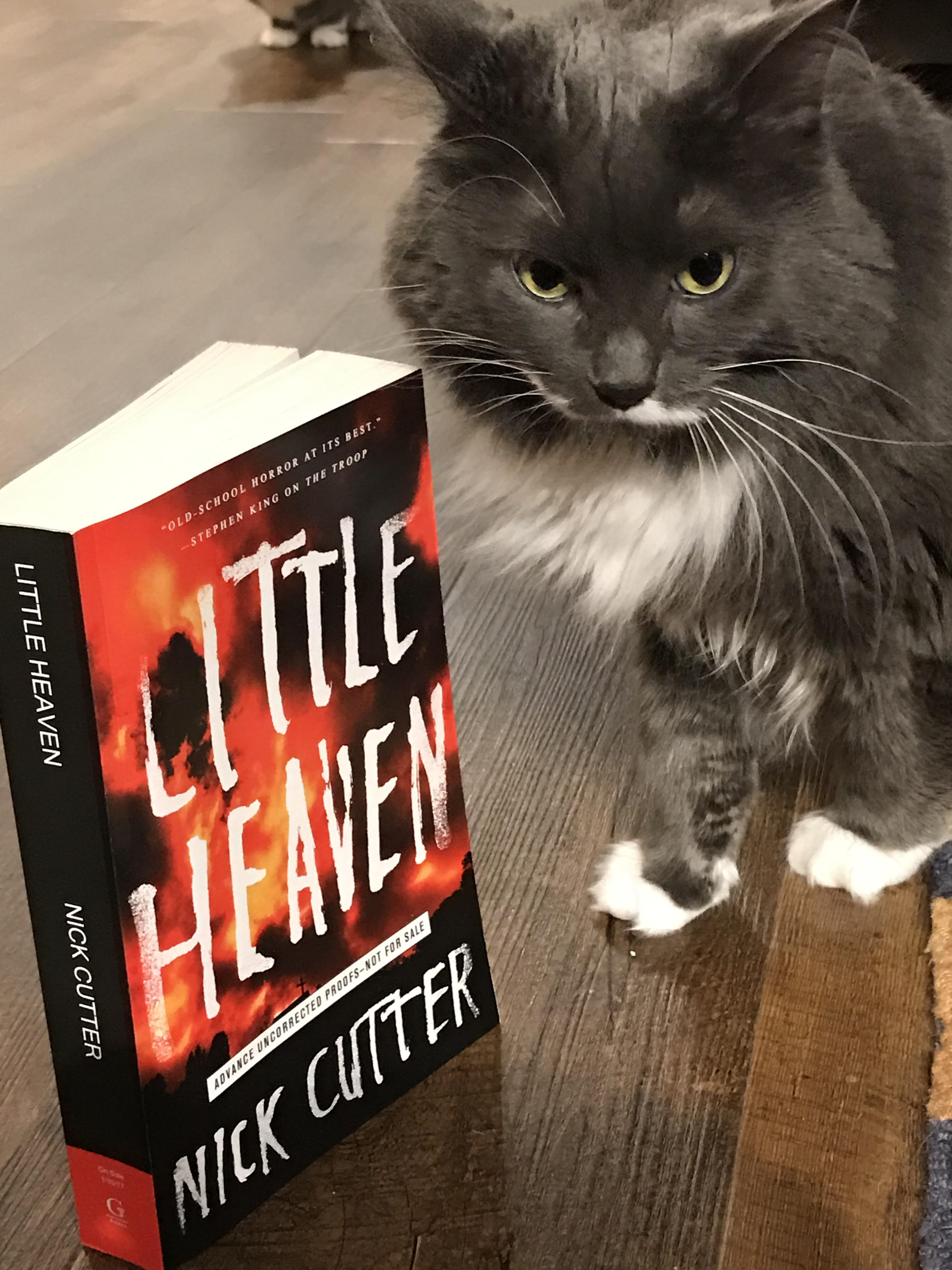 Book Review: Little Heaven by Nick Cutter