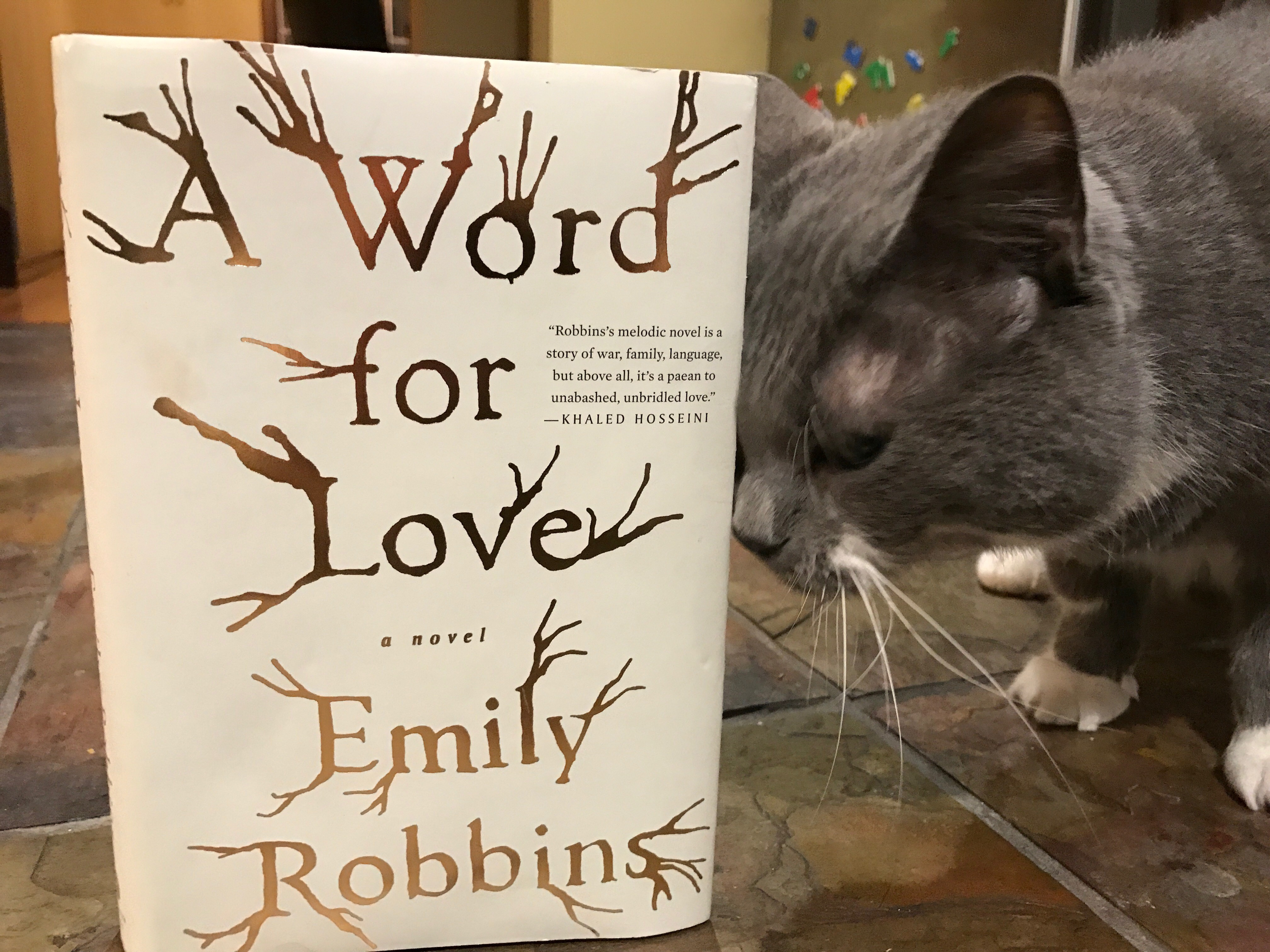 Book Review: A Word For Love by Emily Robbins