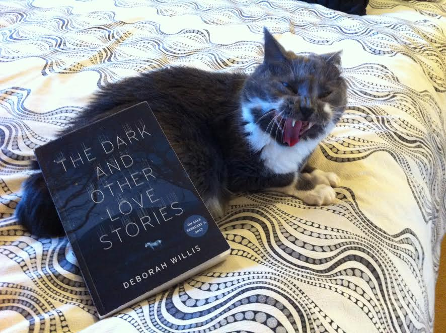 Book Review: The Dark and Other Love Stories by Deborah Willis