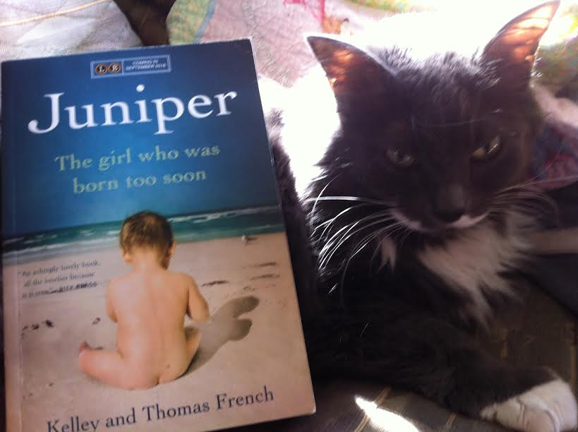 Book Review: Juniper, The Girl Who Was Born Too Soon by Kelley and Thomas French