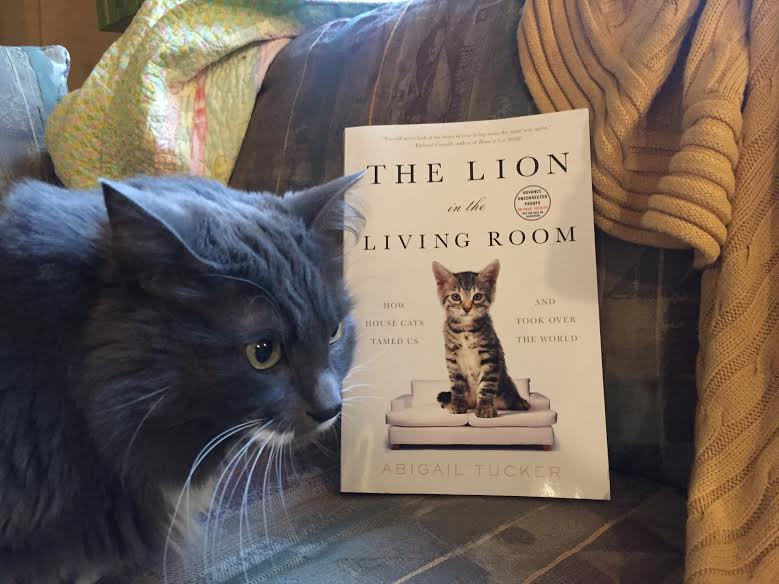 Book Review: The Lion in the Living Room by Abigail Tucker