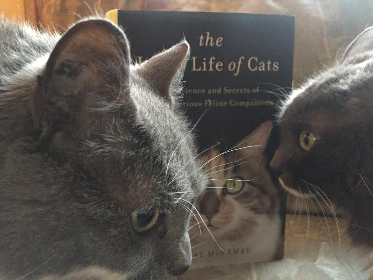 Book Review: The Inner Life of Cats by Thomas McNamee