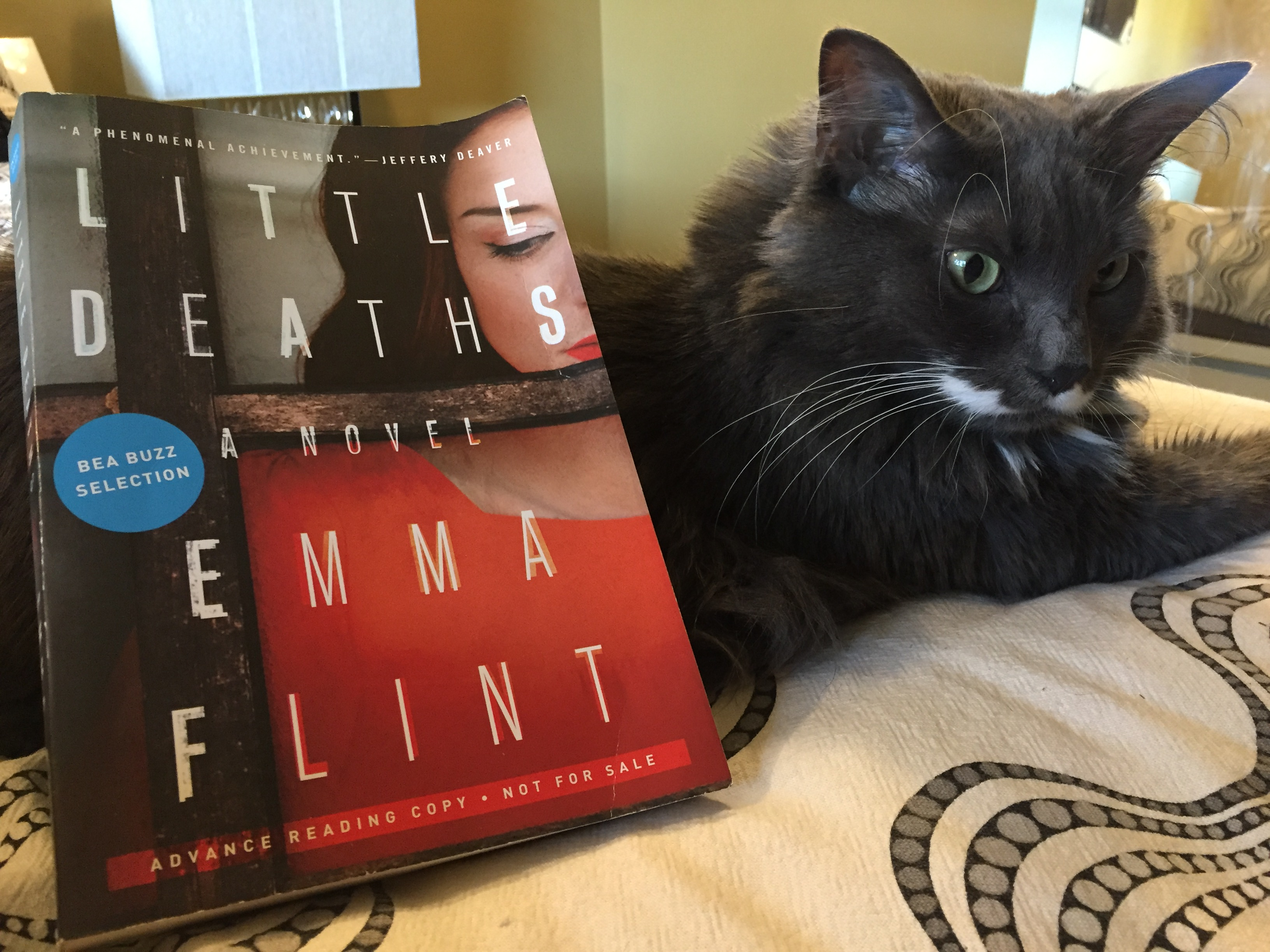 Book Review: Little Deaths by Emma Flint