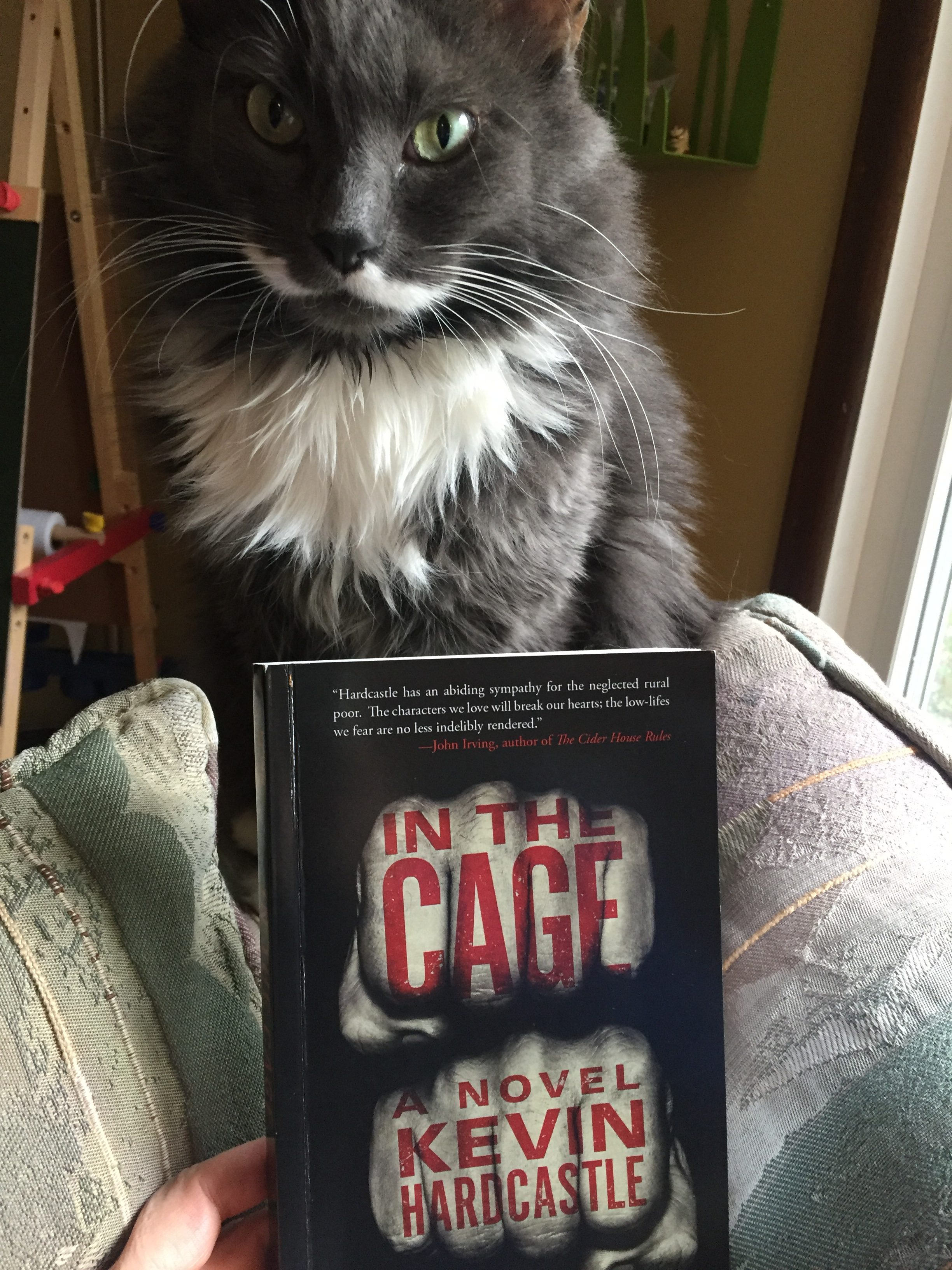 Book Review: In the Cage by Kevin Hardcastle