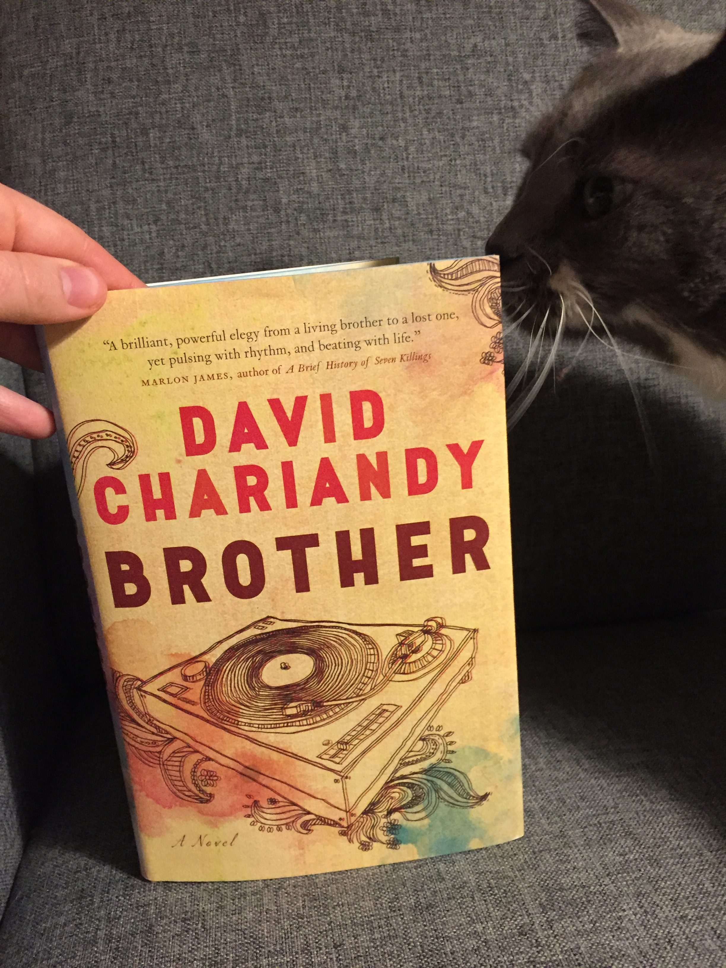 Book Review: Brother by David Chariandy