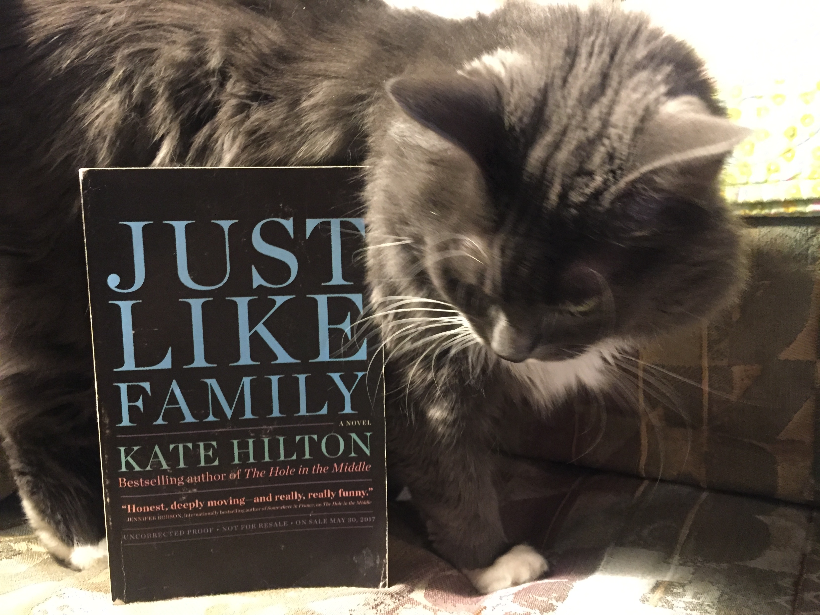 Author Interview and Giveaway: Kate Hilton*