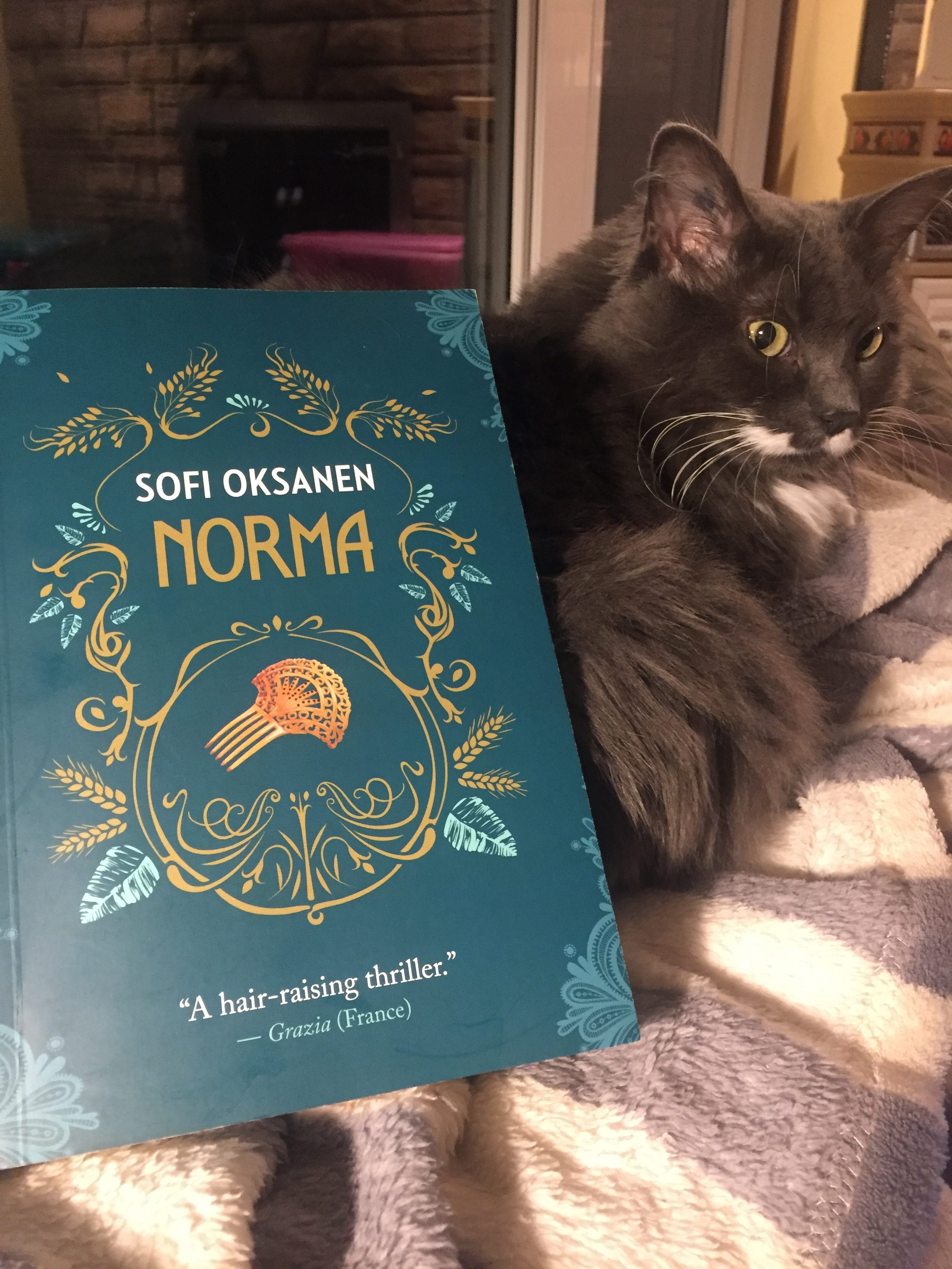 Book Review: Norma by Sofi Oksanen, translated by Owen Witesman