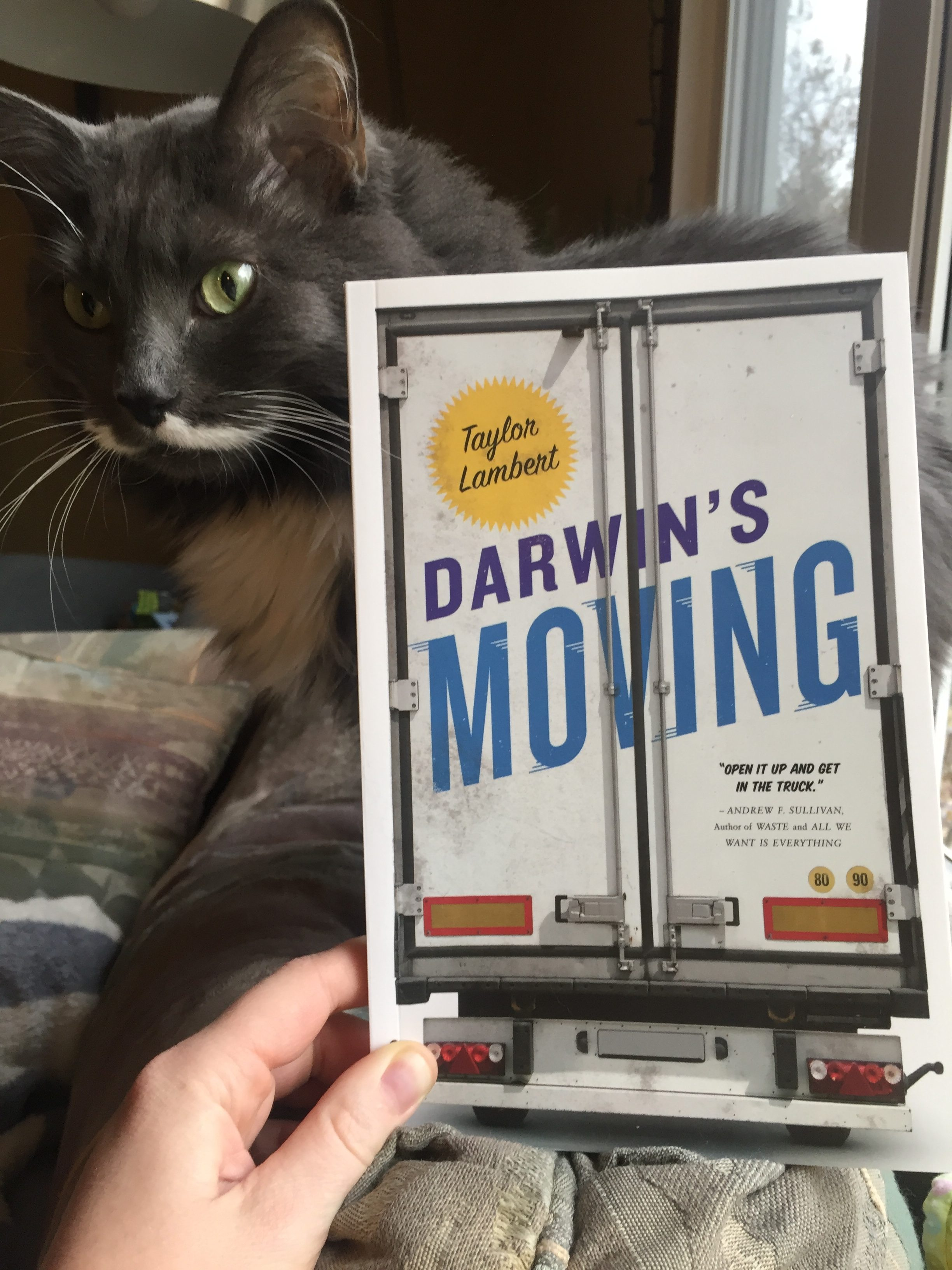 Book Review: Darwin's Moving by Taylor Lambert