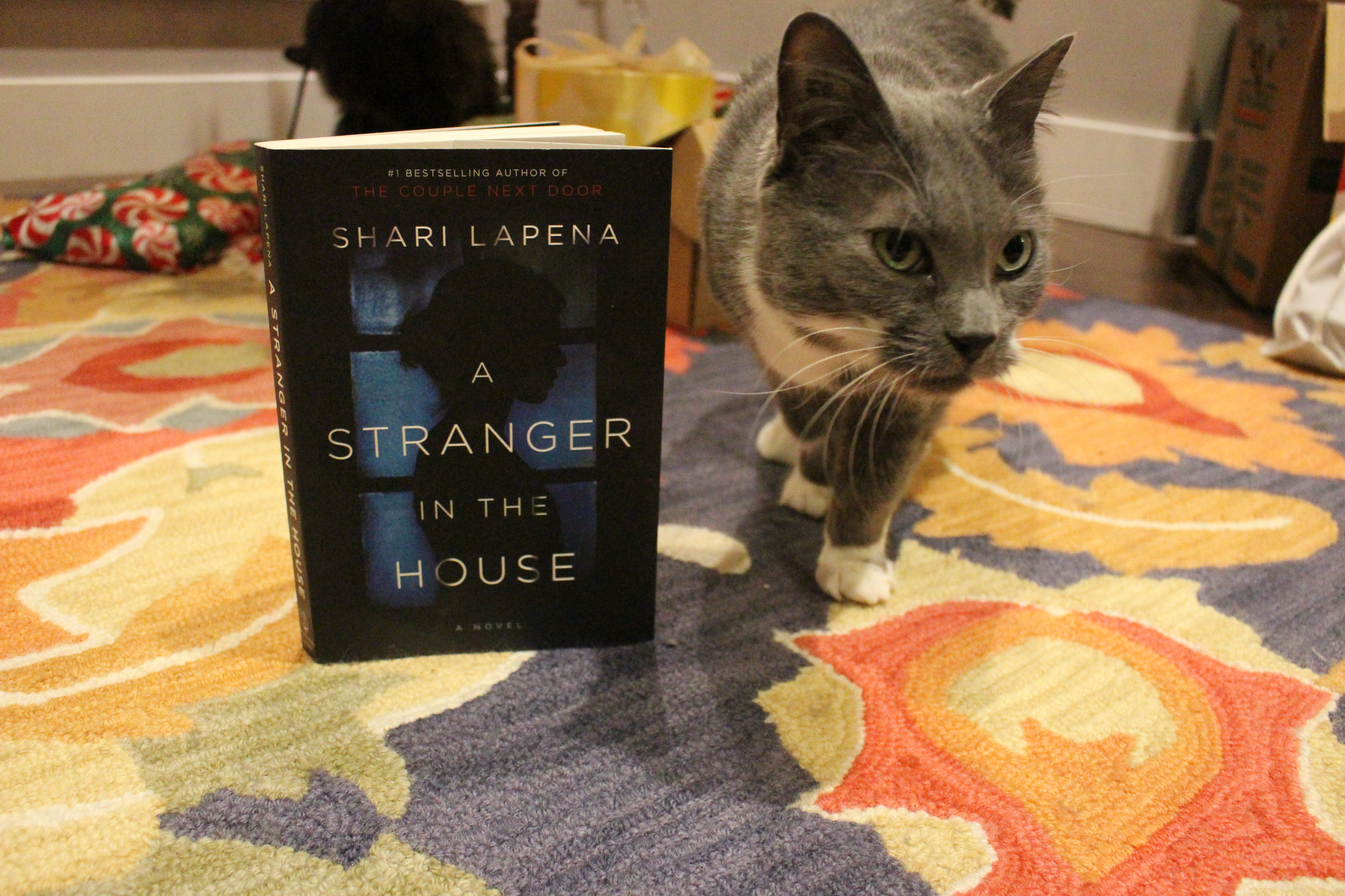 Book Review: A Stranger in the House by Shari Lapena
