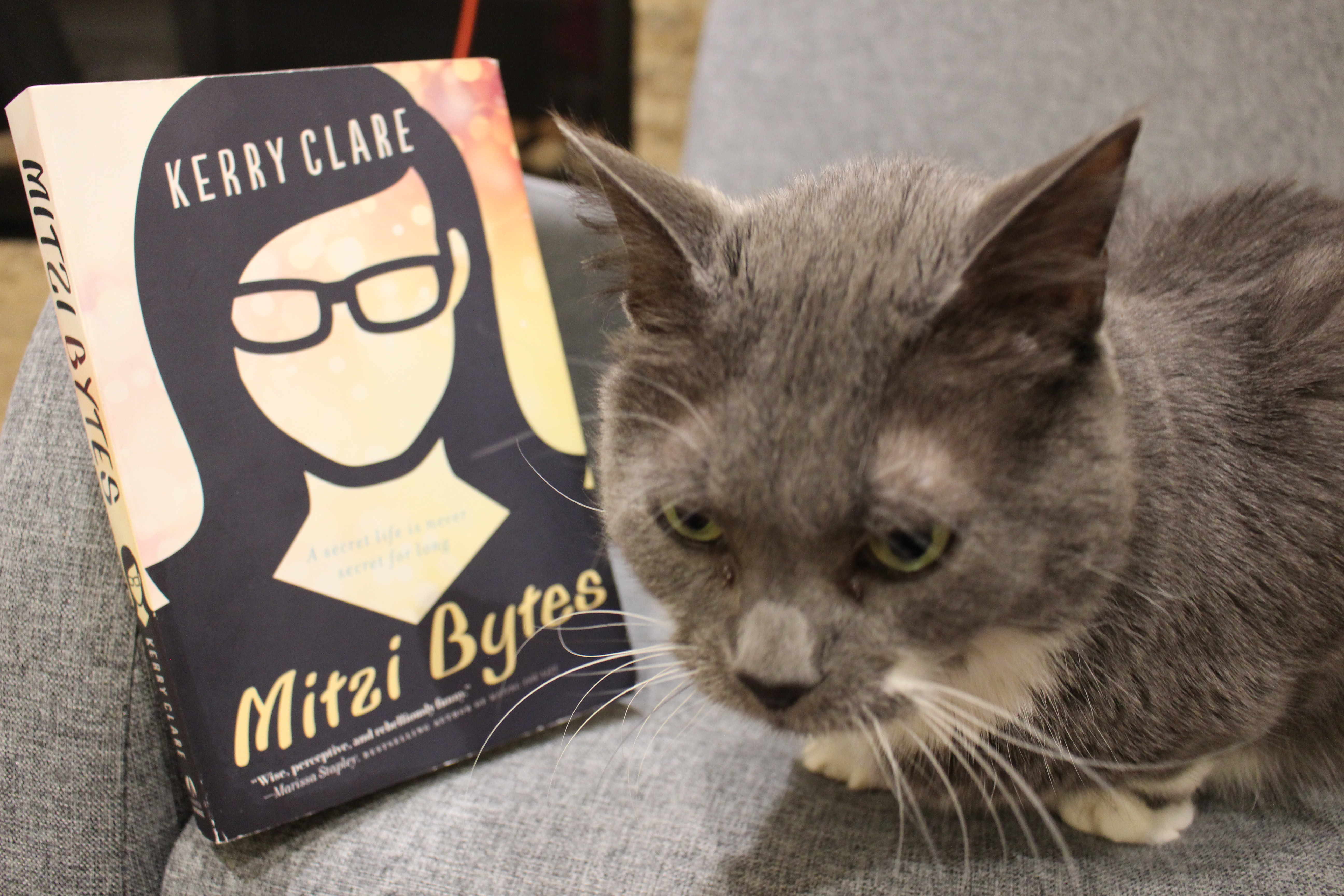 Book Review: Mitzi Bytes by Kerry Clare