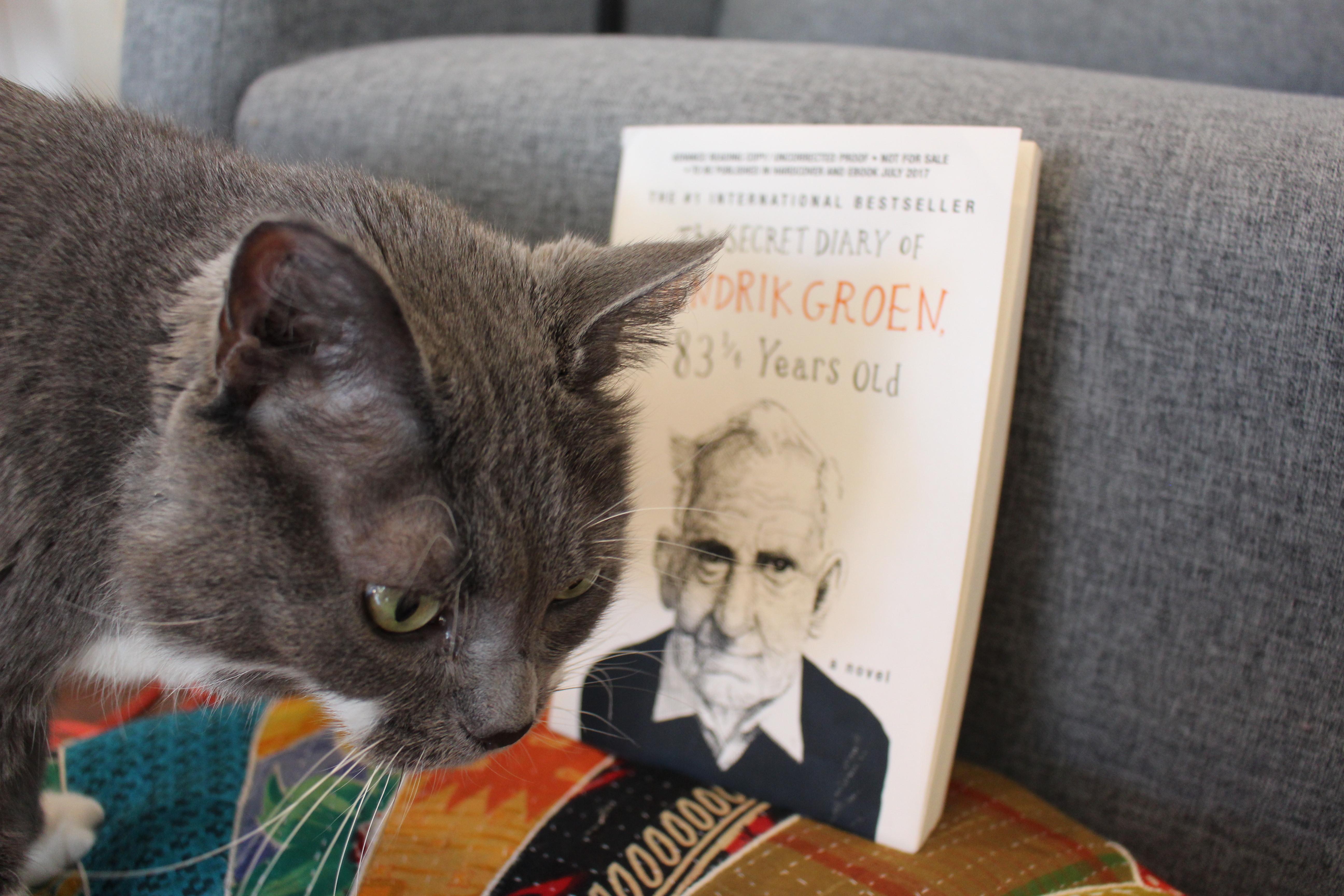 Book Review: The Secret Diary of Hendrik Groen, 83 1/4 Years Old by Hendrik Groen