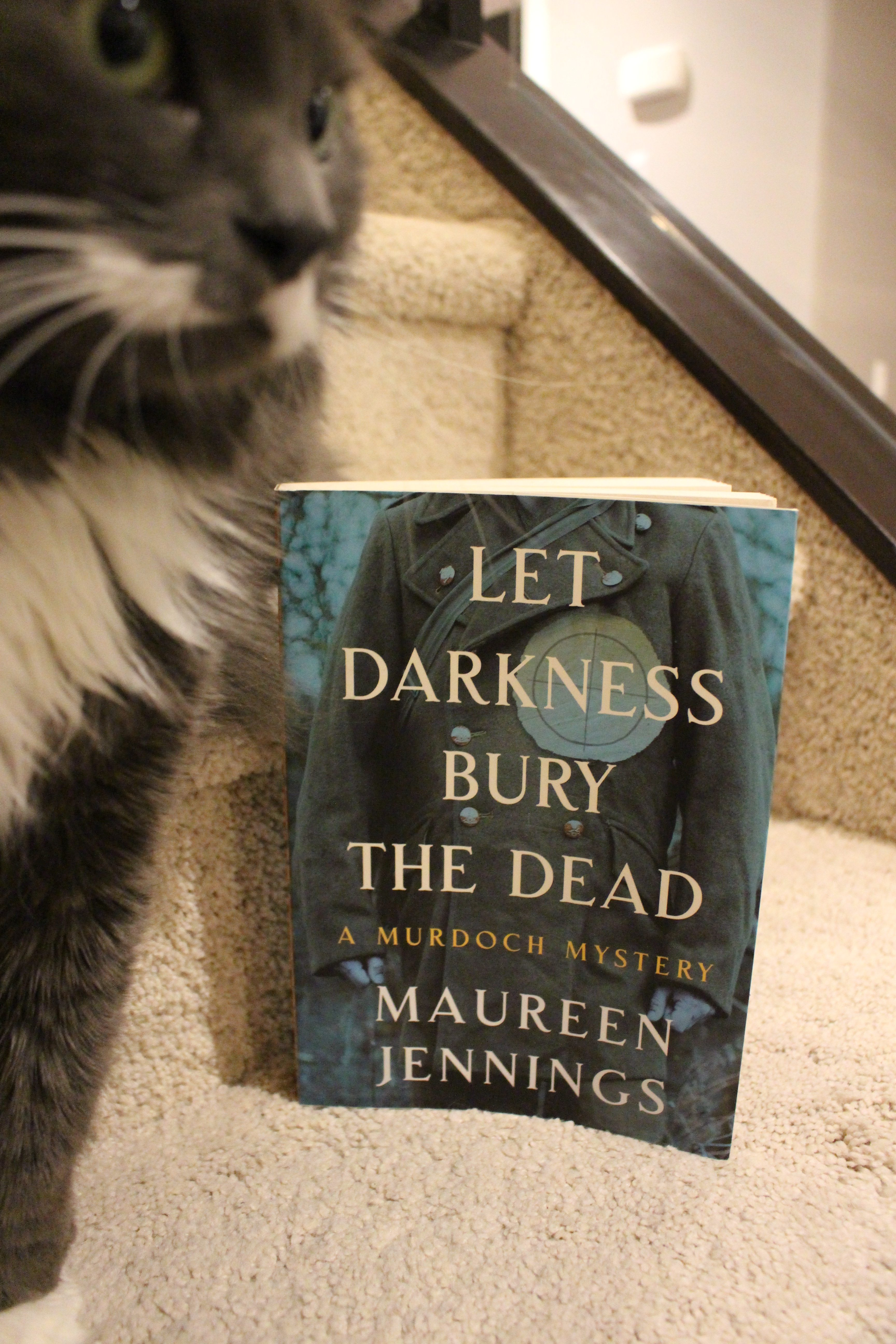 Book Review: Let Darkness Bury the Dead by Maureen Jennings