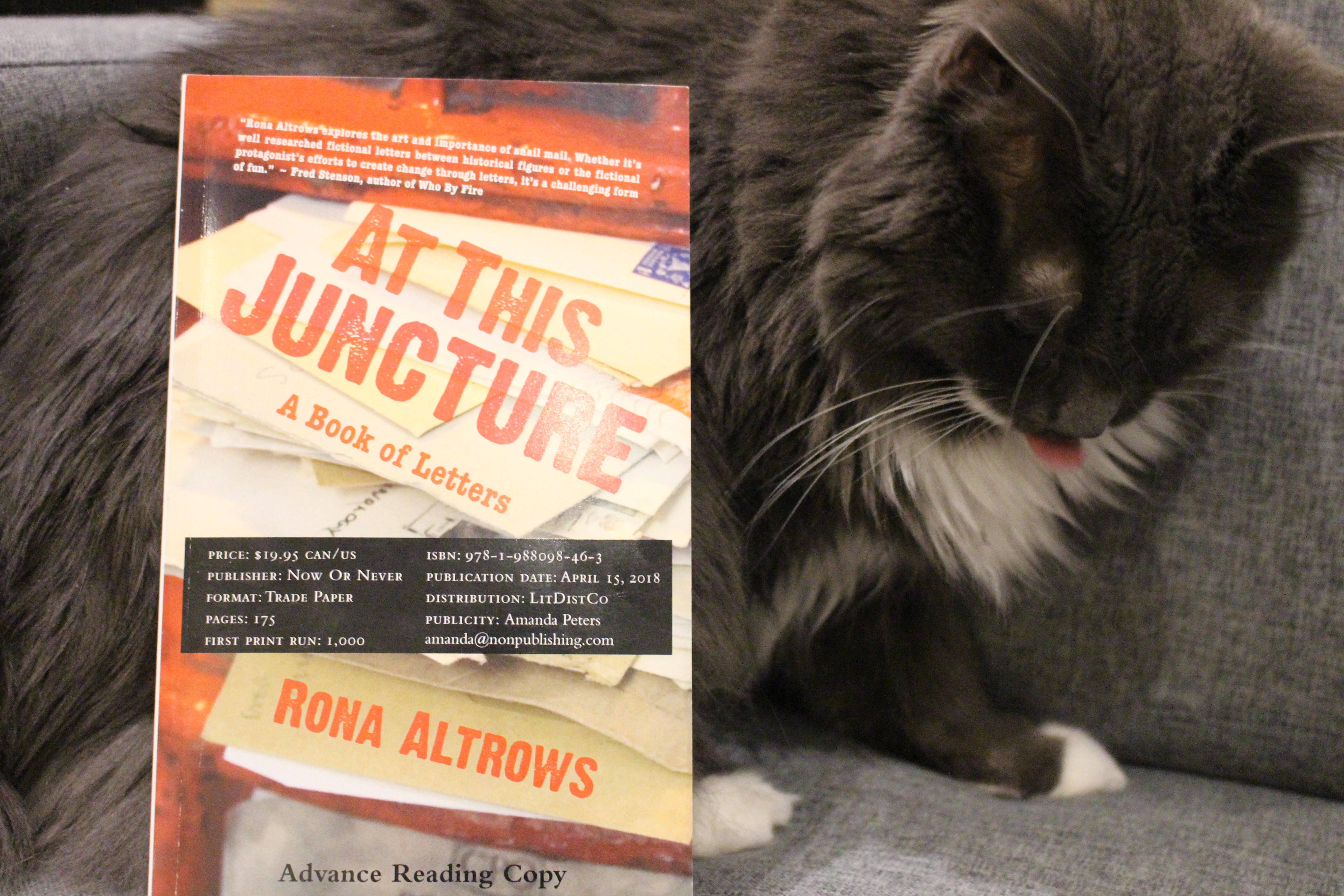 Book Review: At This Juncture by Rona Altrows