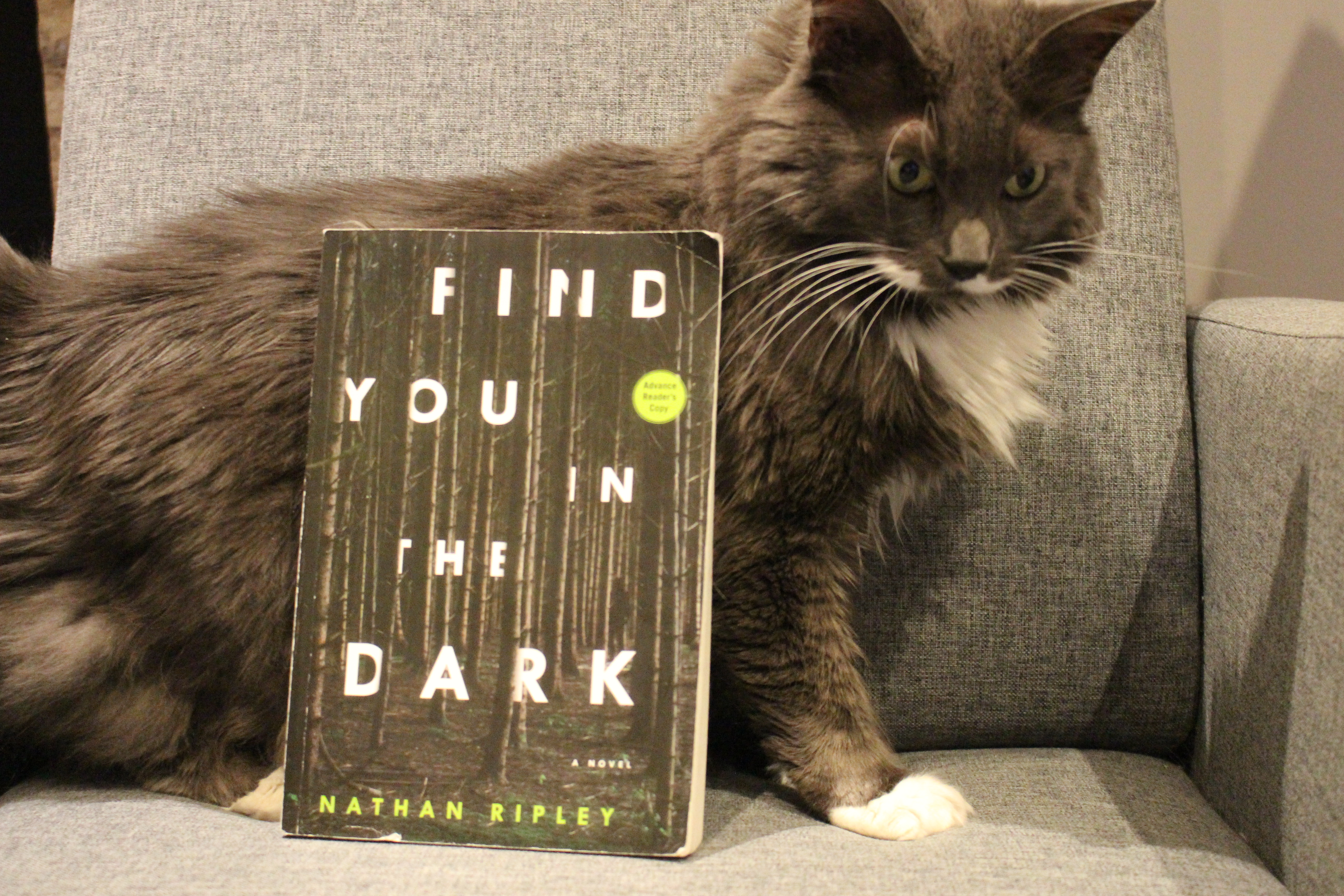 Book Review: Find You in the Dark by Nathan Ripley