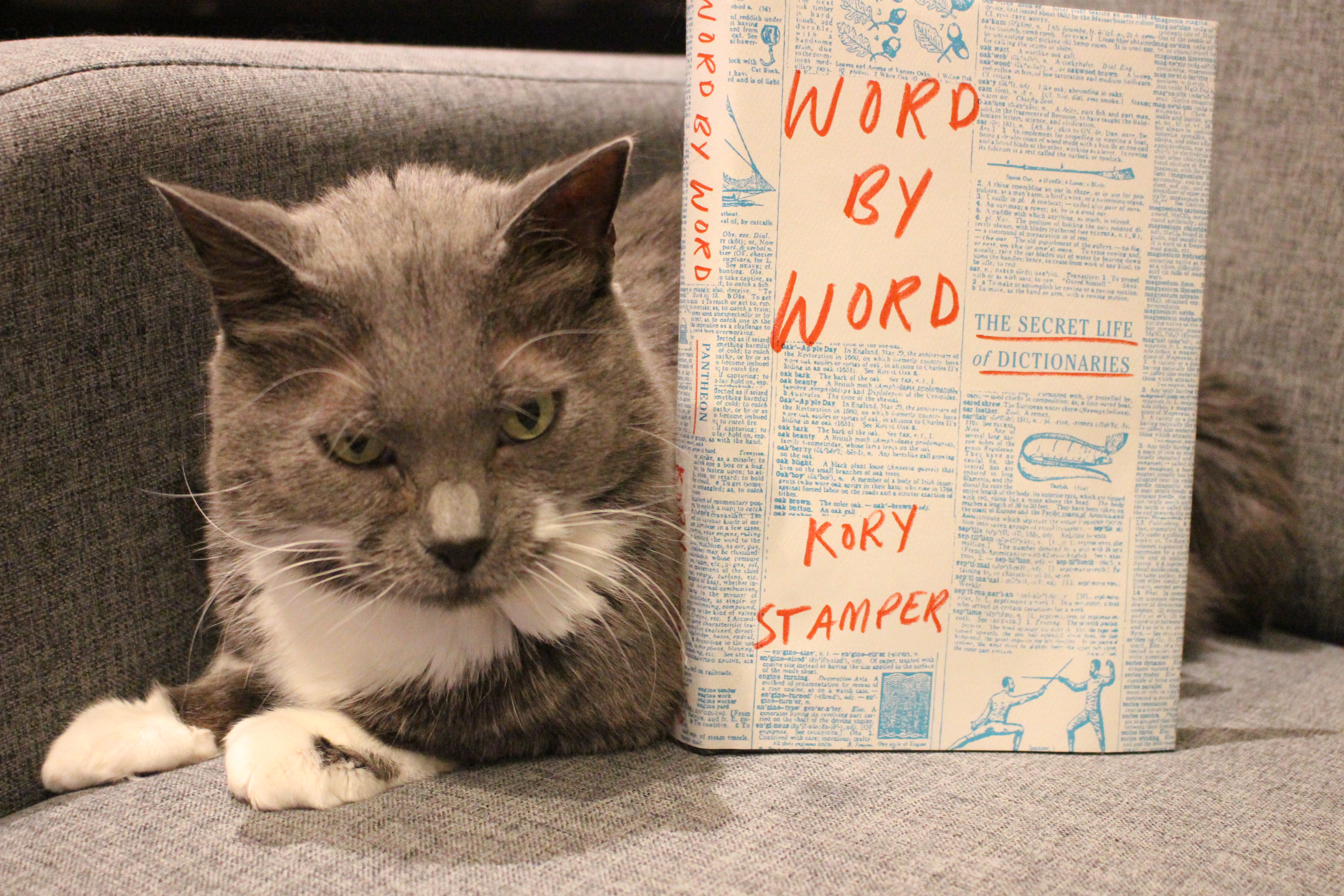 Book Review: Word by Word by Kory Stamper