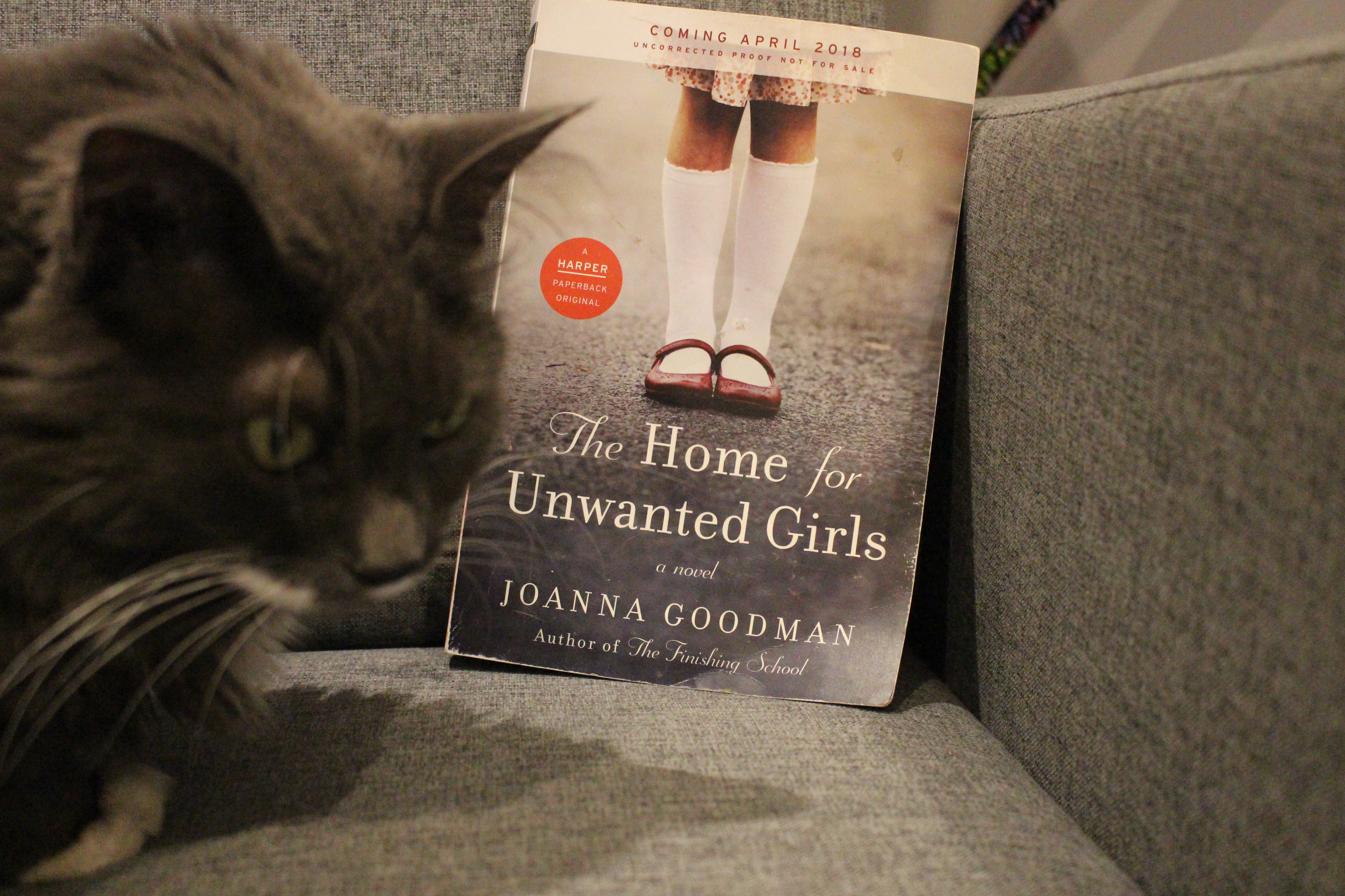 Book Review: The Home for Unwanted Girls by Joanna Goodman