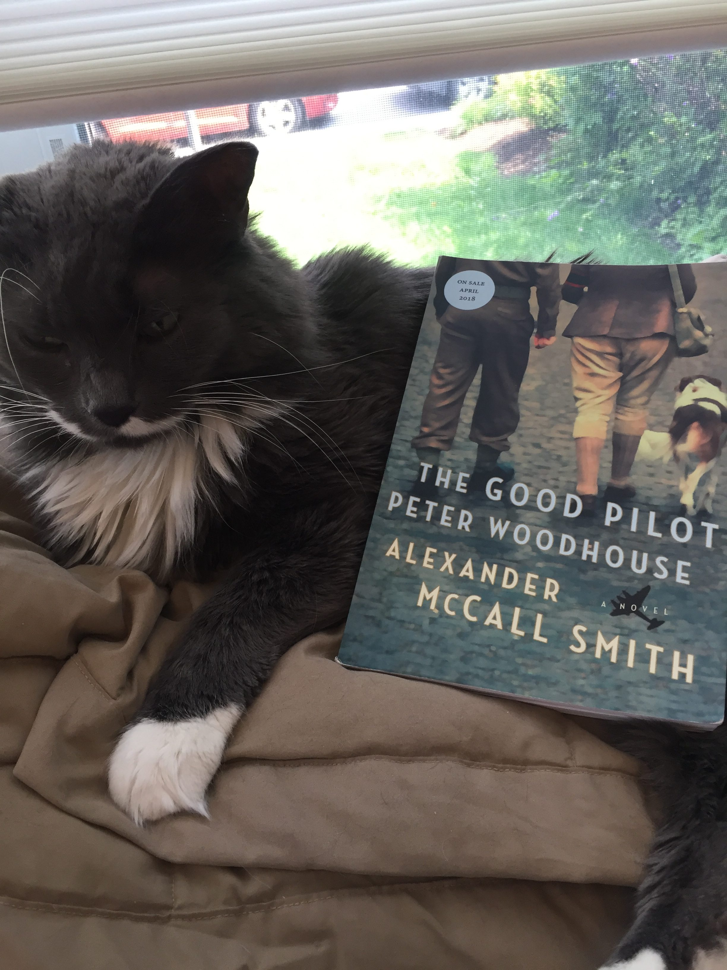 Video Review: The Good Pilot Peter Woodhouse by Alexander McCall Smith