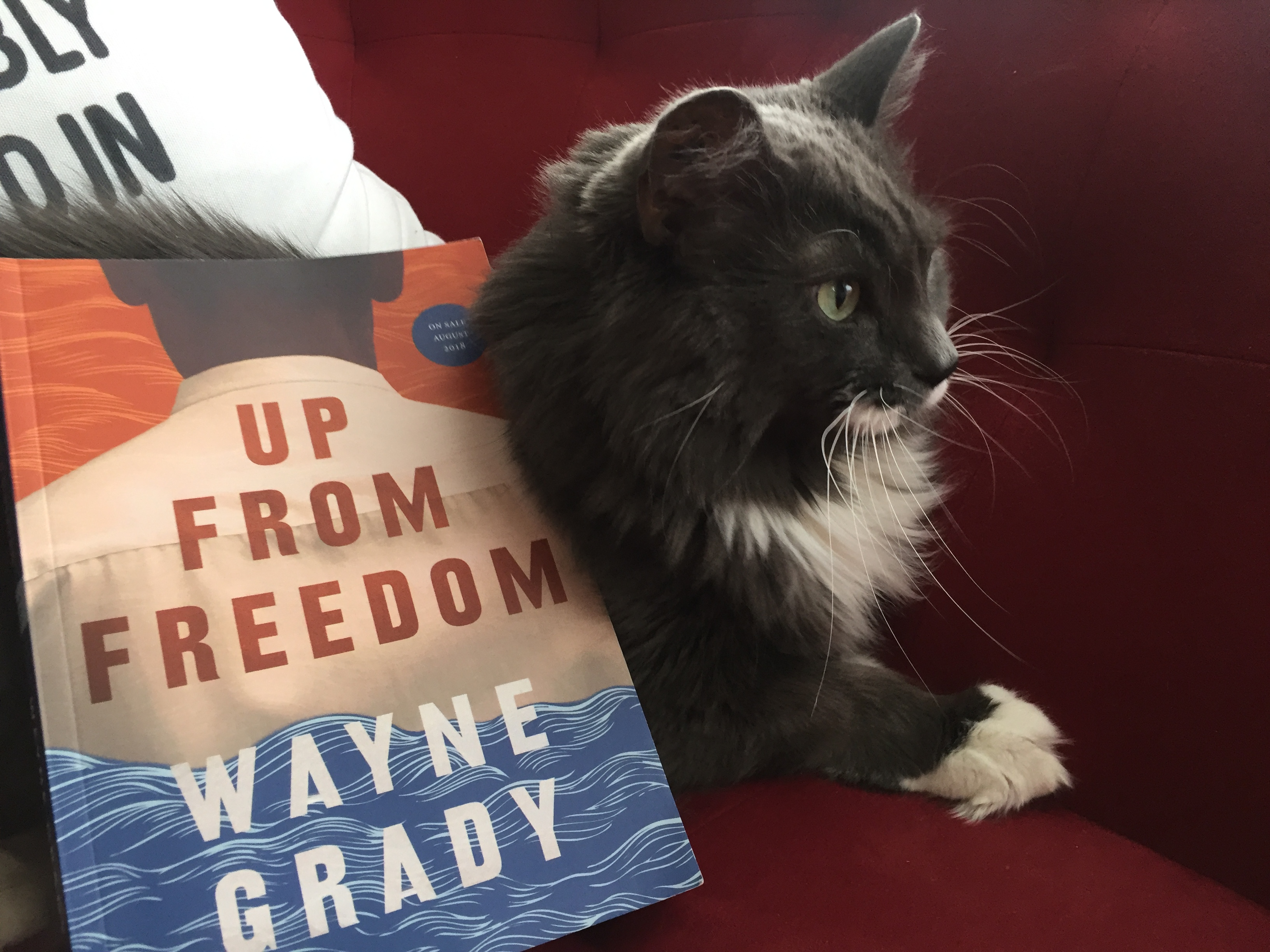 Book Review: Up From Freedom by Wayne Grady