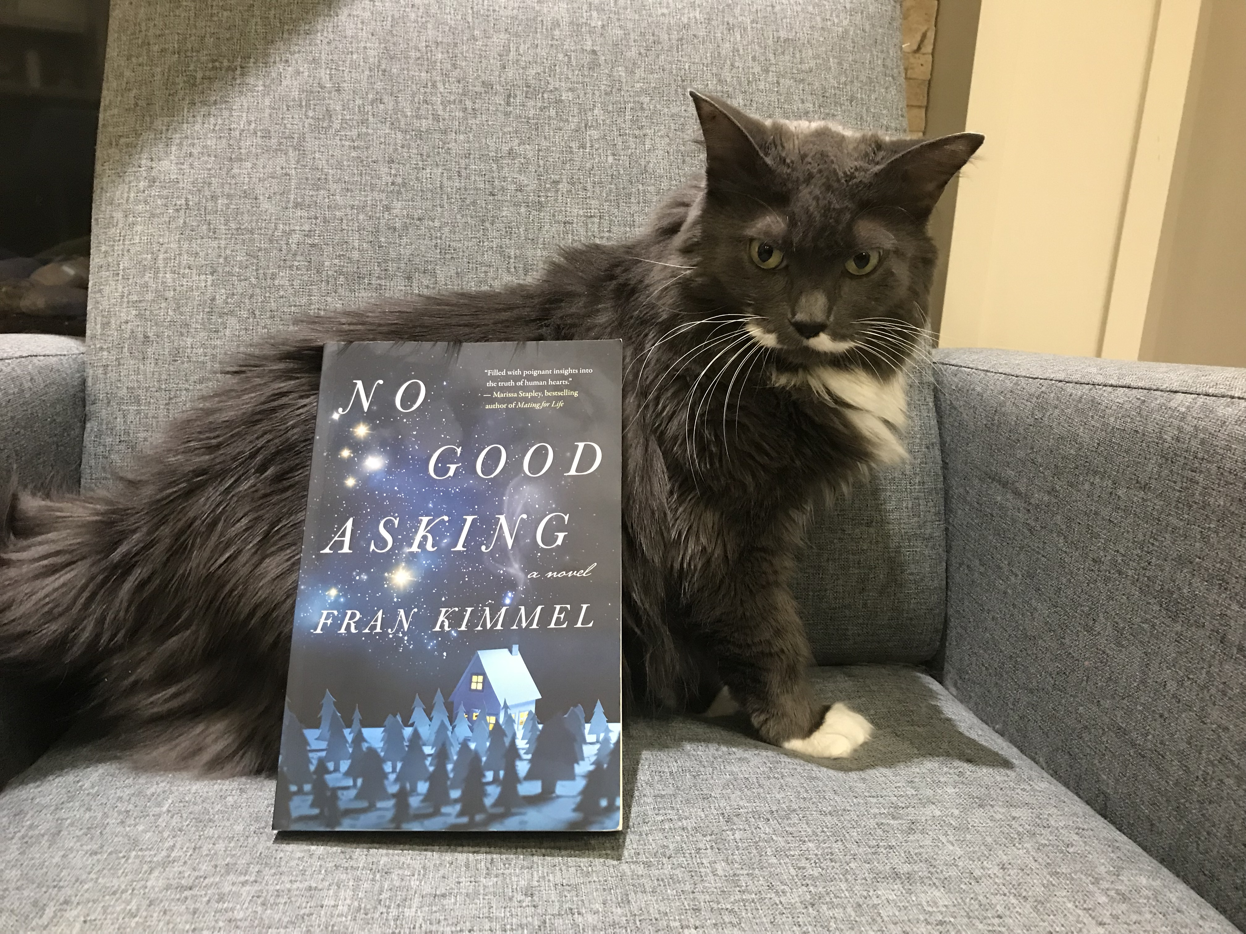 Book Review: No Good Asking by Fran Kimmel