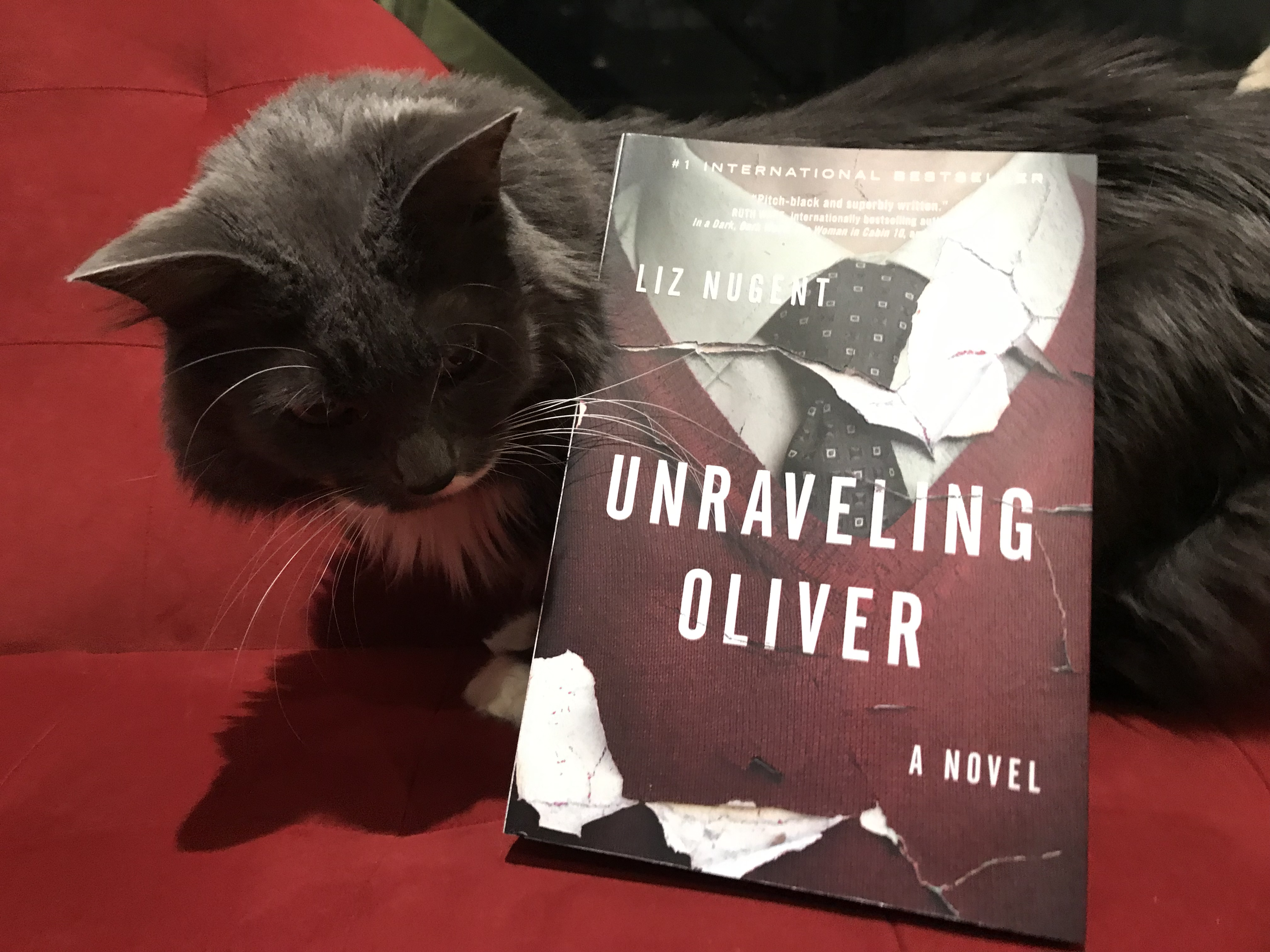 Book Review: Unraveling Oliver by Liz Nugent