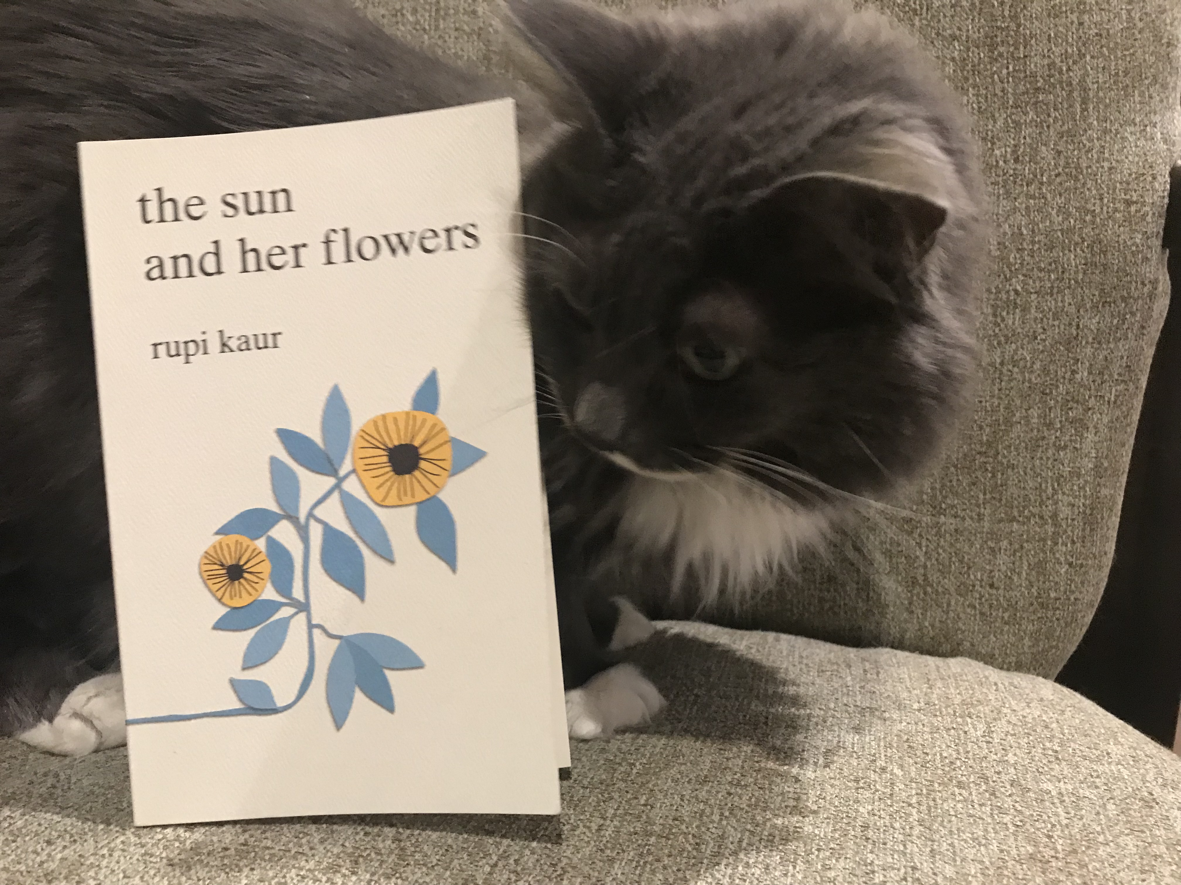 Book Review: the sun and her flowers by rupi kaur