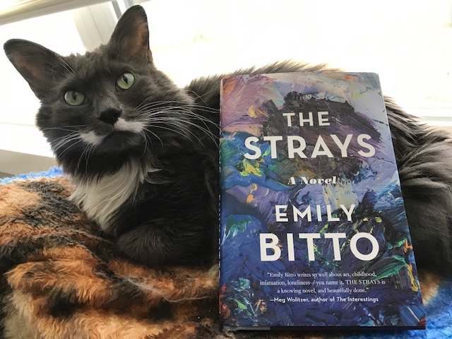 Book Review: The Strays by Emily Bitto