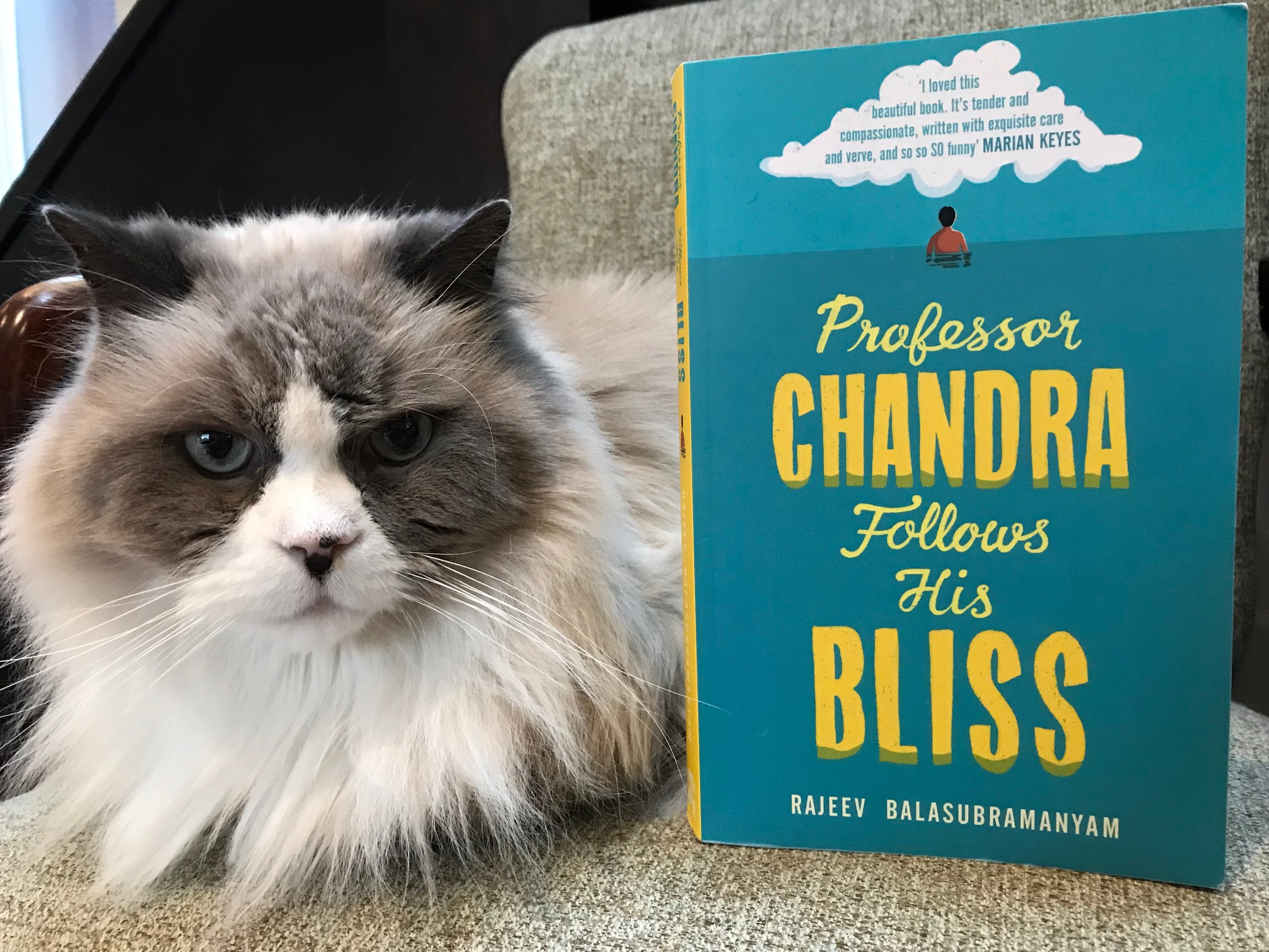 Book Review: Professor Chandra Follows His Bliss by Rajeev Balasubramanyam