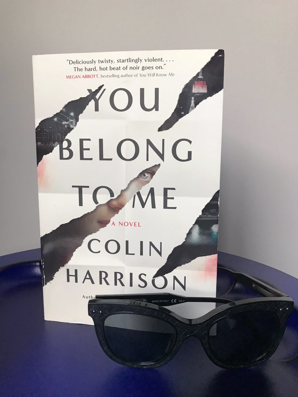 Book Review: You Belong To Me by Colin Harrison