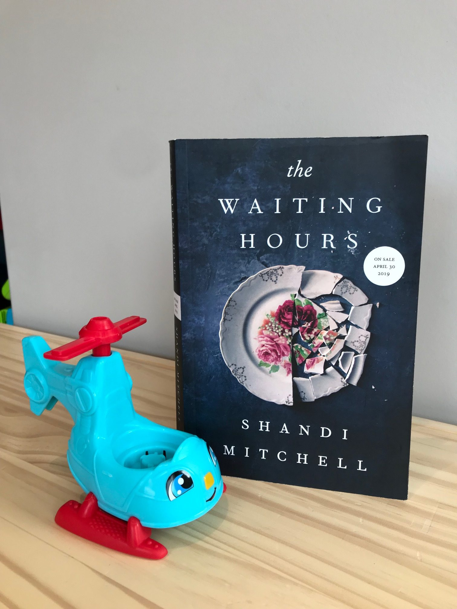 Book Review: The Waiting Hours by Shandi Mitchell