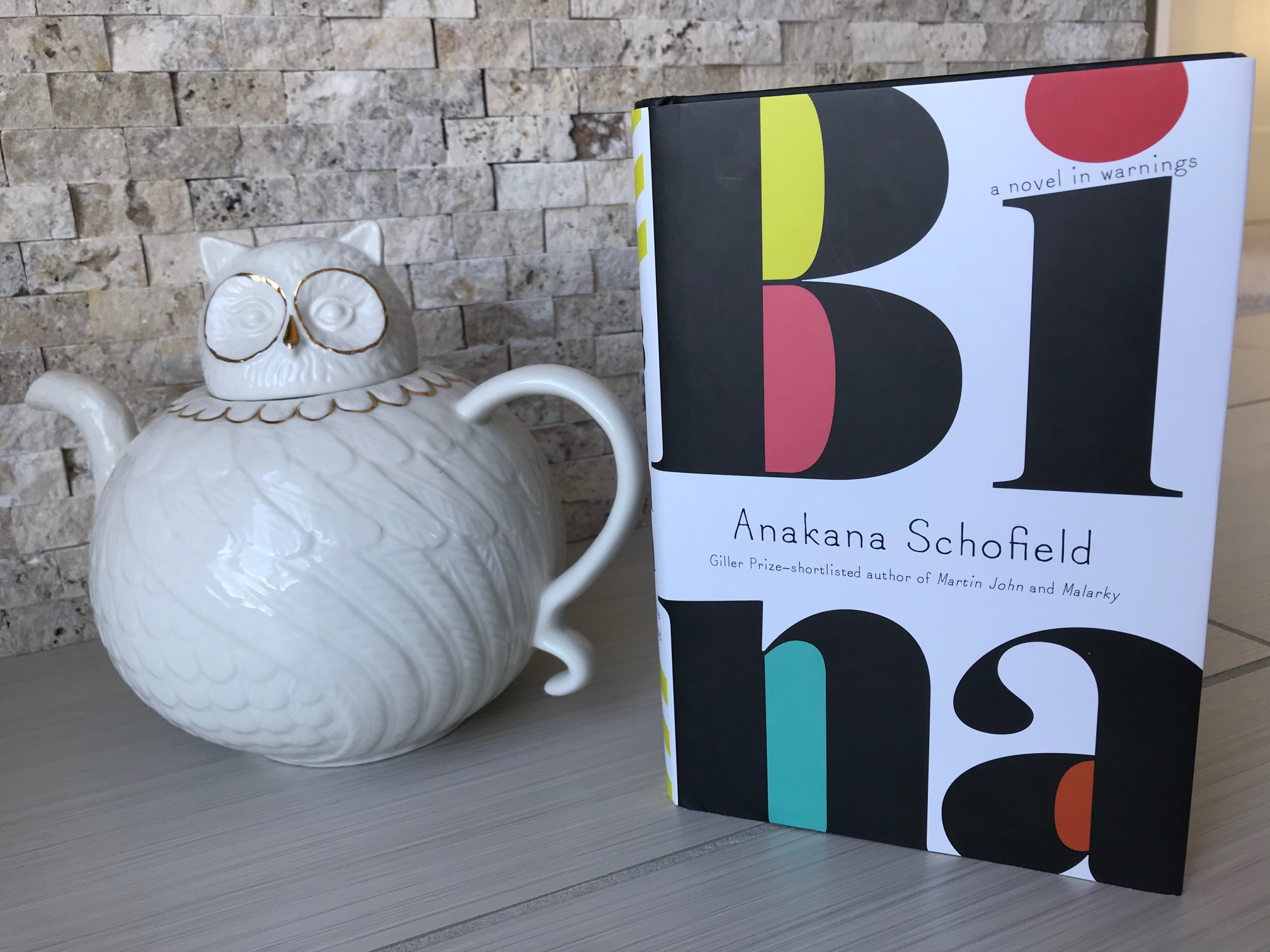 Book Review: Bina by Anakana Schofield