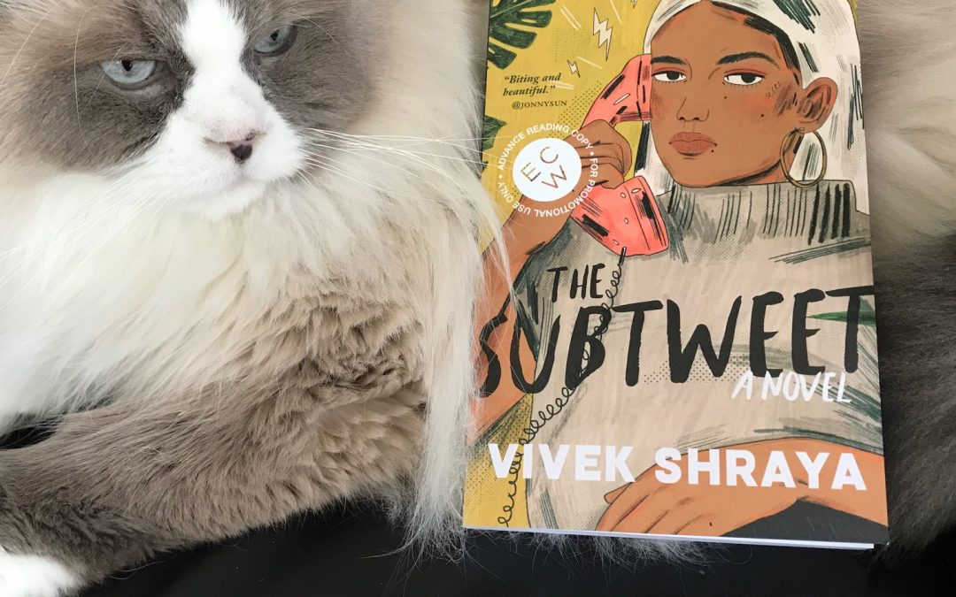 Book Review: The Subtweet by Vivek Shraya