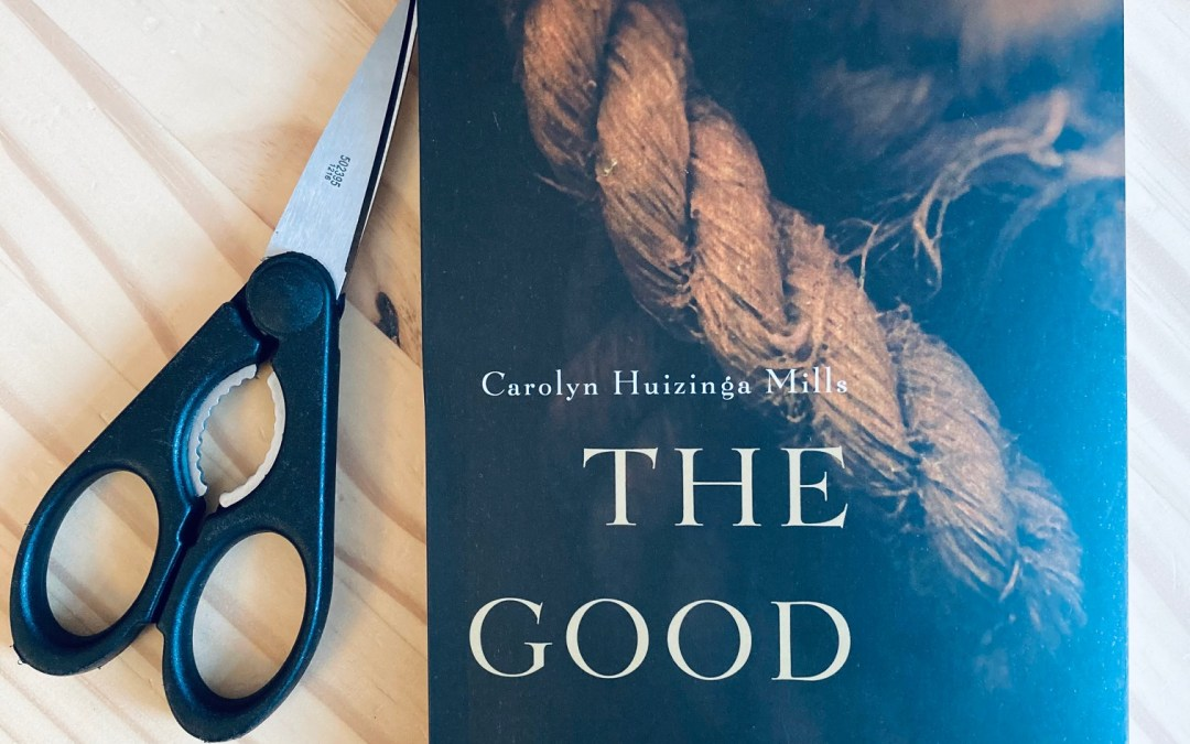 Book Review: The Good Son by Carolyn Huizinga Mills